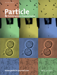 Particle_2020_COVER_Alvaro.png
